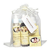 Earth Mama Angel Baby New Baby Essentials Gift Bundle