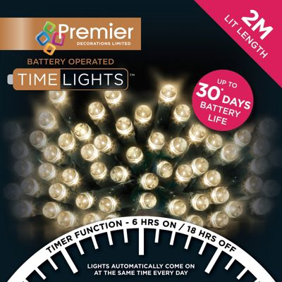 Premier 200 Multi Action Battery Operated Warm White LED Lights