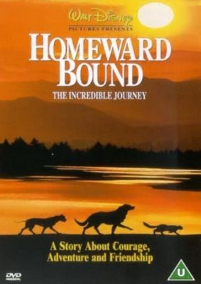 Homeward Bound (DVD)