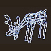Premier 70cm Acrylic Grazing Reindeer With 90 White LEDs (LV161012) Christmas Lights