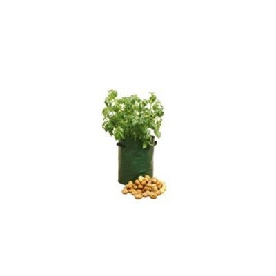 Haxnick Potato Patio Planter Set X3