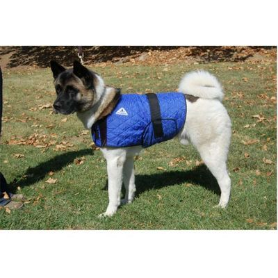 PJ Pet Products Hyperkewl Cooling Dog Coat - Large - 41 x 52cm
