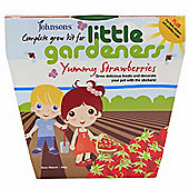 Little Gardeners Yummy Strawberries Activity Pot Growing Kit
