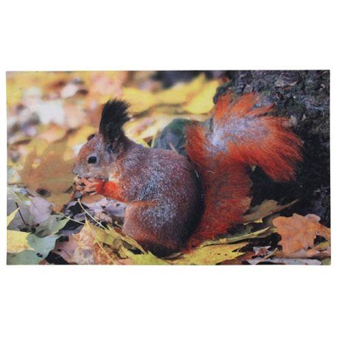 Fallen Fruits Printed Doormat (Squirrel)