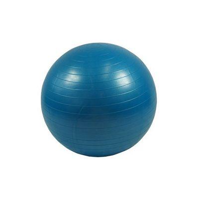 Bodymax Anti Burst Gym Ball - 65cm (Blue)