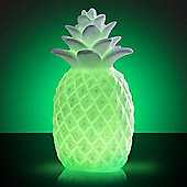 Colour Changing LED Pineapple