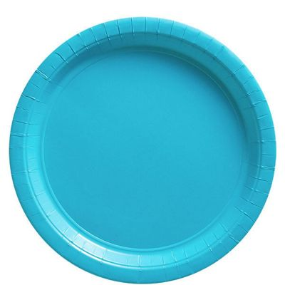 Turquoise Plates - 23cm Paper Party Plates - 20 Pack