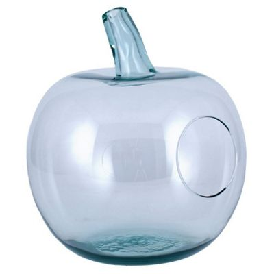 Clear Recycled Glass Apple Terrarium
