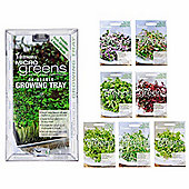 7pc Microgreen Baby Leaf Salad Shoot Seeds & Growing Tray