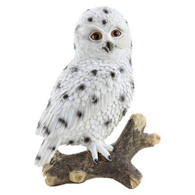 30cm Wall-Mountable Realistic Polyresin Snowy Owl Garden Ornaments