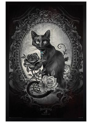 Alchemy Black Wooden Framed Paracelcus Poster 61 x 91.5cm