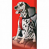 Mikki Car Harness - Large