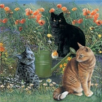 Mixed Cats In The Garden - 1000pc Puzzle