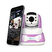 ElectrIQ 720p Wifi Pet Monitoring Camera with Audio