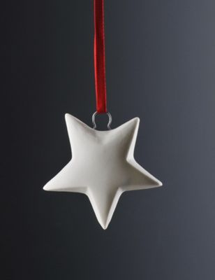 Weimar Star Christmas Tree Decoration (Set of 2)