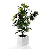 Artificial 6ft Finger Palm Tree
