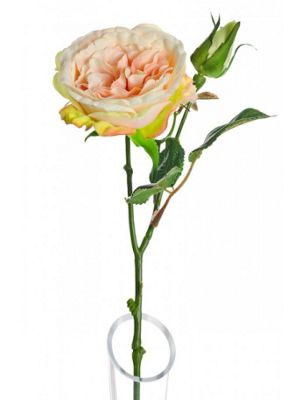 Artificial - Lydia Cabbage Rose Spray - Peach