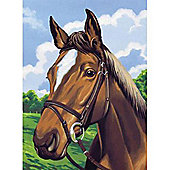 Junior PBN - Horses Head