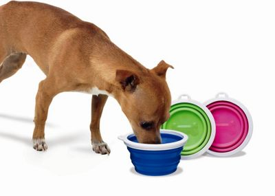 Petmate Silicone Dog Travel Bowl in Blue - 3 Cup