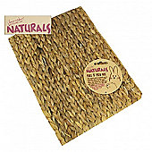 Boredom Breakers Naturals Chill N Chew Mat