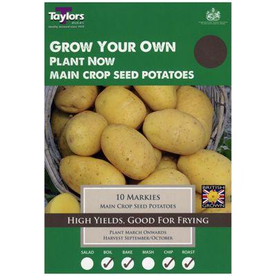 10x Main Crop Seed Potato 'Markies' Grow Your Own Vegetables