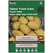 10x Main Crop Seed Potato 'Markies' Grow Your Own Vegetables