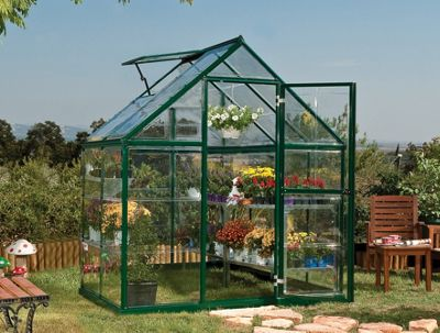 Buy Palram Harmony 6X4 - Green Greenhouse - Polycarbonate And