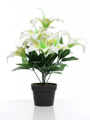 Artificial - Potted Lily - Cream