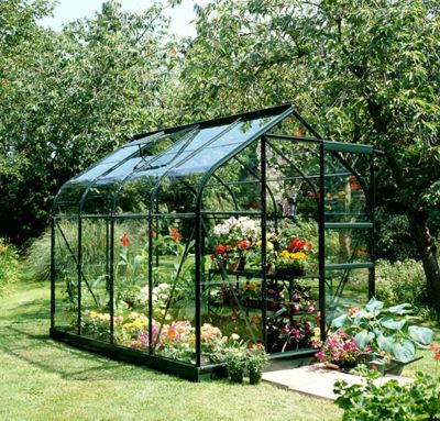 Halls 6x8 Supreme Curved Greenframe Greenhouse + Green Base-frame - Toughened Glass