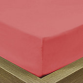 Julian Charles Luxury 180 Thread Count Fitted Sheet - Coral