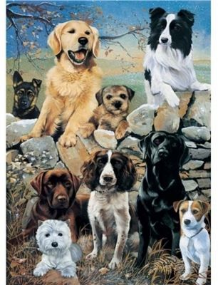 Mixed Dogs - The Look Out - 1000pc Puzzle