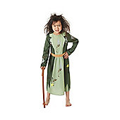 Roald Dahl The Twits Mrs Twit Fancy Dress Costume - Green