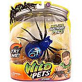 Wild Pets Spider - Chiller