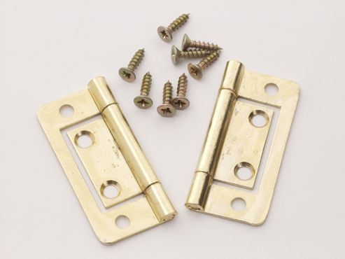 Basic P/P 2419 Flush Hinges Electro Brass 50mm X2