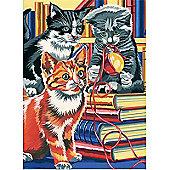 Junior PBN - Kitten on Books