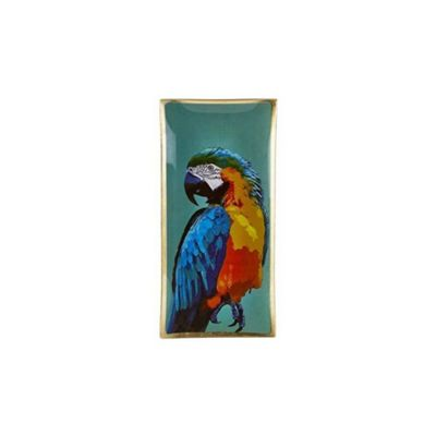 Villa Collection Glass Jewelry Make Up Tray Candle Plate PARROT Macaw Design 21.5cm x 10cm