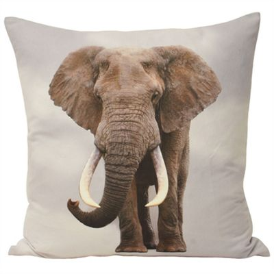Riva Home Animal Elephant Multicolour Cushion Cover - 55x55cm