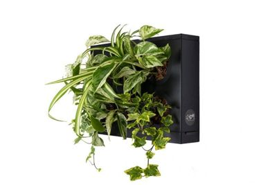 Ortisgreen HOH Indoor and Outdoor Wall Mounted Hanging Multi Plant Pot Herb Garden Display in Black
