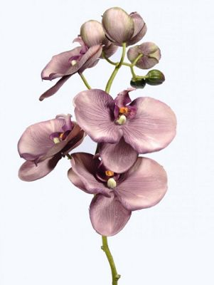 Artificial - Vintage Orchid - Purple