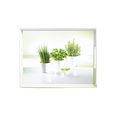 EMSA Serving Tray with Handles, Herbs Print, 50 x 37cm