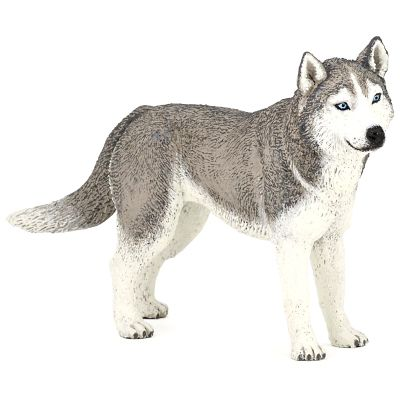 PAPO Dog Companions Siberian Husky