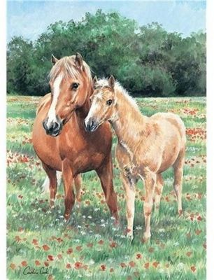 Mother and Foal - 1000pc Puzzle