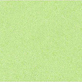 Tissue - 24 - Light Green