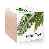 FeelGreen Grow Your Own BioDegradable EcoCube with Palm Tree Seeds 7.5 x 7.5 x 7.5 cm