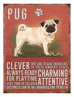 Original Metal Sign Co Large Pug 30 x 40cm