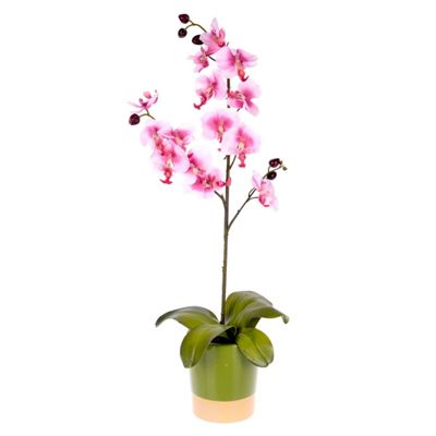Homescapes Pink Orchid in Moss Green Ceramic Pot - Artificial Flowers and Plants