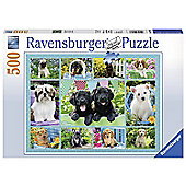 Ravensburger Cute Puppies - 500pc Puzzle