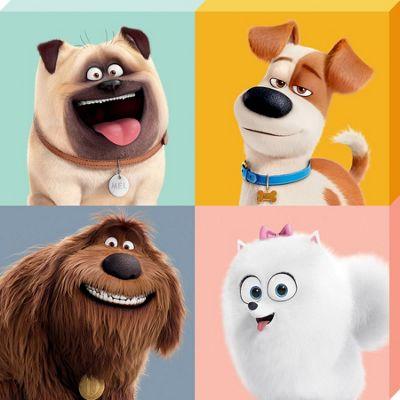 The Secret Life of Pets Character Split Canvas Print 40 x 40cm