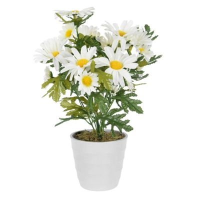 Homescapes Artificial Daisies Textile Flower Arrangement in a Classic White Pot