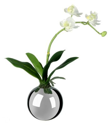 Buy Parlane Artificial Orchid White Spray In Round Silver Vase
